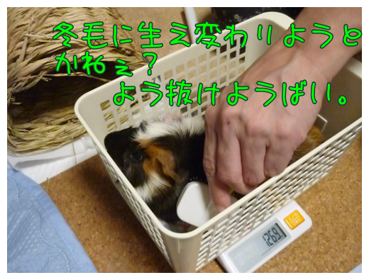 20140929weight4.png