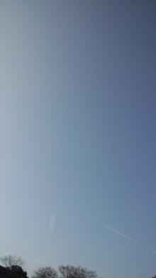 セラピストすみれのキラキラな毎日~ボチボチいきましょう☆-110223_0844~01.jpg