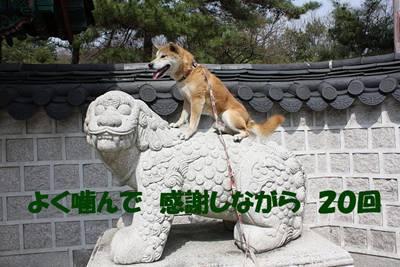 photo019a_R.jpg