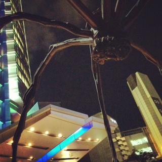 クモがーギャー