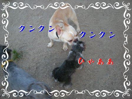 014_20100718200848.jpg