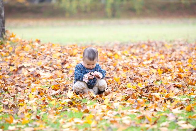 弘前 子ども写真 誕生日 記念撮影 ロケーション撮影 出張撮影