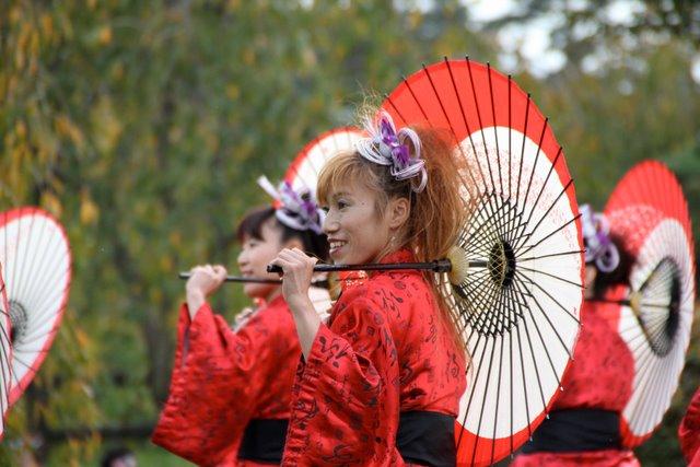 弘前城 菊と紅葉まつり 2010 お城でよさこい