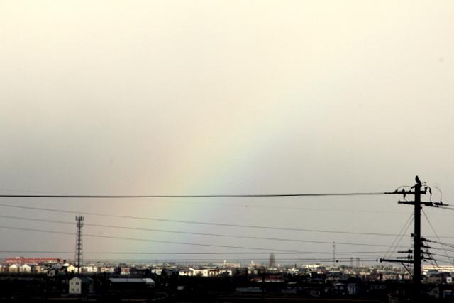 弘前市 虹