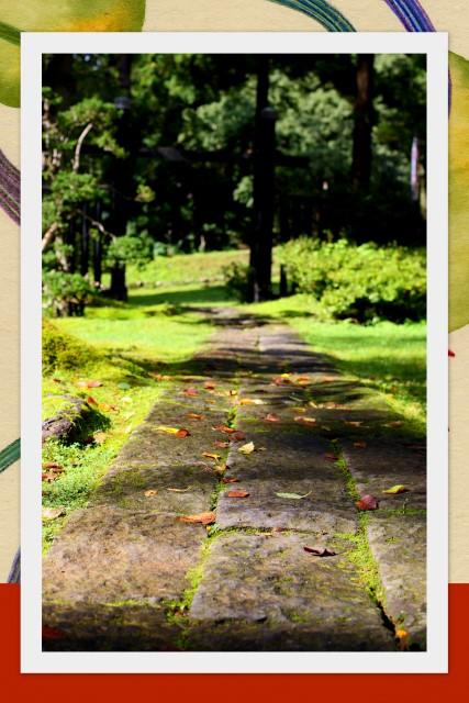 結婚式 弘前 岩木山神社 神前式 挙式 スナップ 写真 撮影