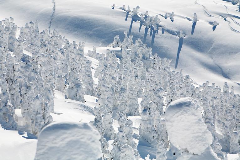 snowboard00021-008.jpg