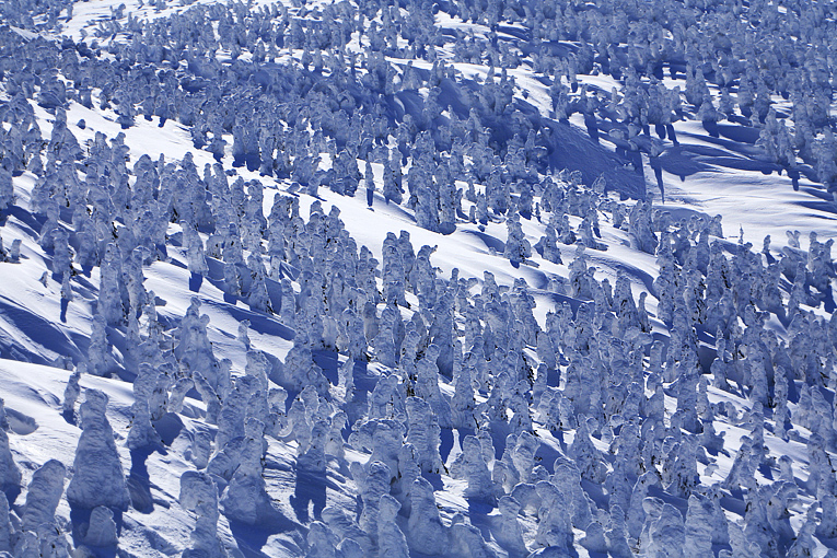 snowboard00021-085.jpg