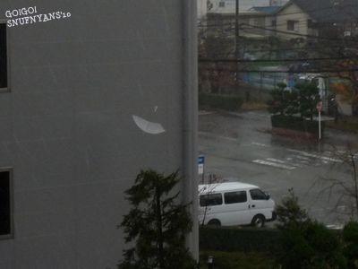 飛びまわる傘