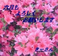 htutuji3-.jpg