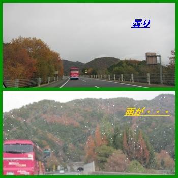 kani1_20121202213612.jpg