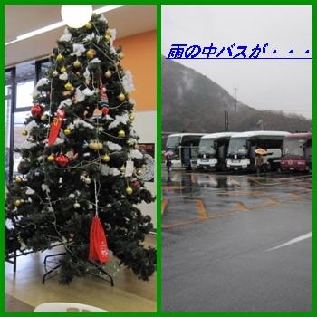 kani4_20121202213616.jpg