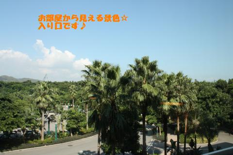 011_convert_20101019165211.jpg