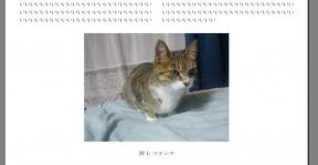 20120719_133749.jpg