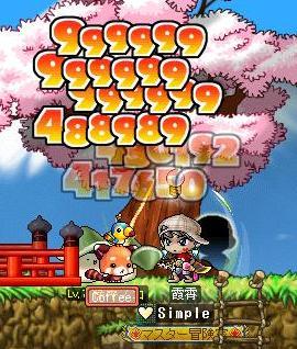 Maple101126_003952.jpg