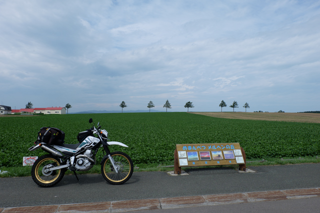 DSCF7022-1.jpg