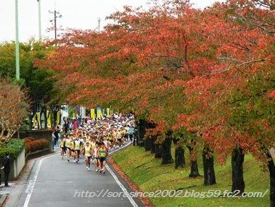 円谷幸吉マラソン