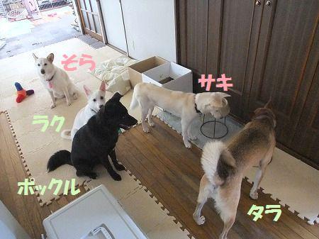 2010_0726_6.jpg