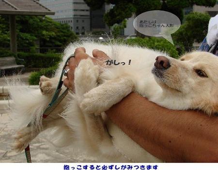 2010_0728_komugi_6.jpg