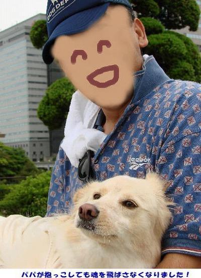 2010_0728_komugi_7.jpg