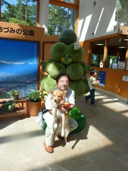 2011_0927_fuku_3.jpg