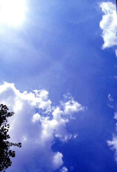fc2blog_20120922125704bc7.jpg