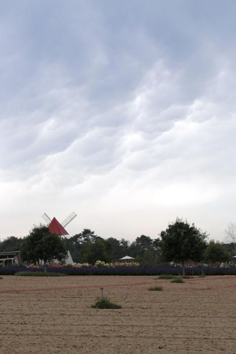 20121006-2.jpg