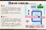 小坂田公園(2)