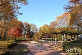 小坂田公園(6)
