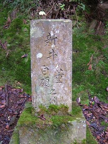 新井白蛾の墓 (9)