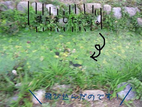 1116 覚醒? (6)