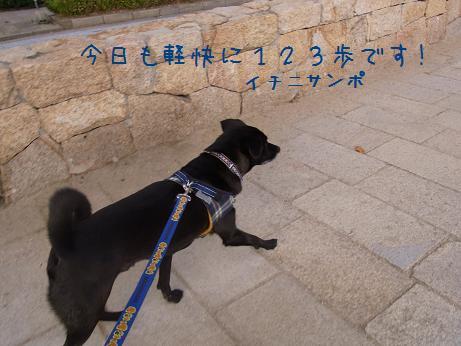 1201 誕生日イブ (2)