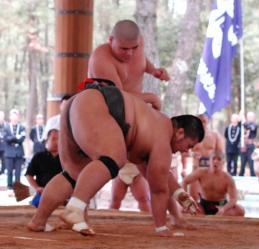 相撲無差別中島_050