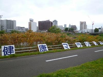 健康マラソン20141013-8
