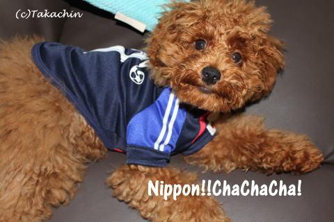 nippon03