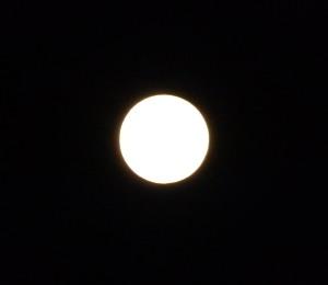 PA093809皆既月食