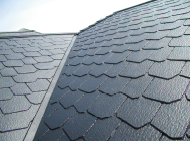 photo_eco_roof.png