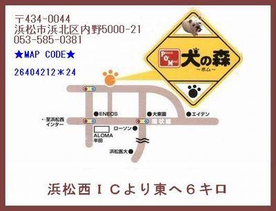 110416-1_20120821183411.jpg