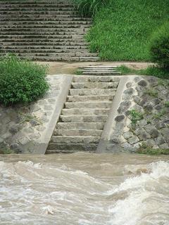 賀茂川の洪水_04_2010-07-15F