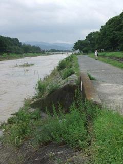 賀茂川の洪水_05_2010-07-15