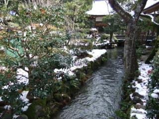 初詣_03_2011-01-02