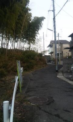 柊野_03_2010-12-23