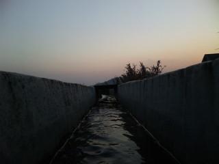柊野_10_2010-12-23