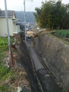 柊野_11_2010-12-23