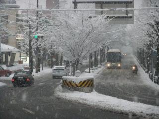 北山通の雪_01_2010-12-31