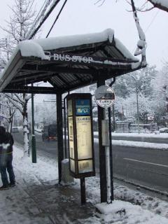 北山通の雪_02_2010-12-31
