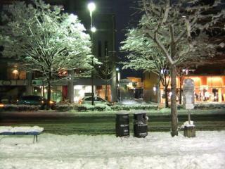 北山通の雪_04_2010-12-31