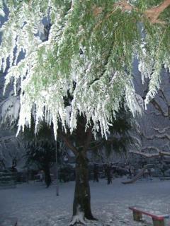深泥池児童公園の雪_01_2010-12-31X