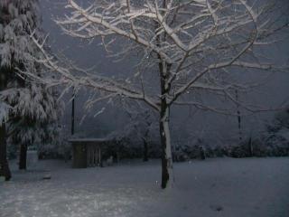 深泥池児童公園の雪_05_2010-12-31