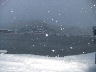深泥池_03_2010-12-31
