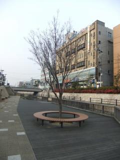 寝屋川市駅と寝屋川せせらぎ公園_05A_2011-02-05